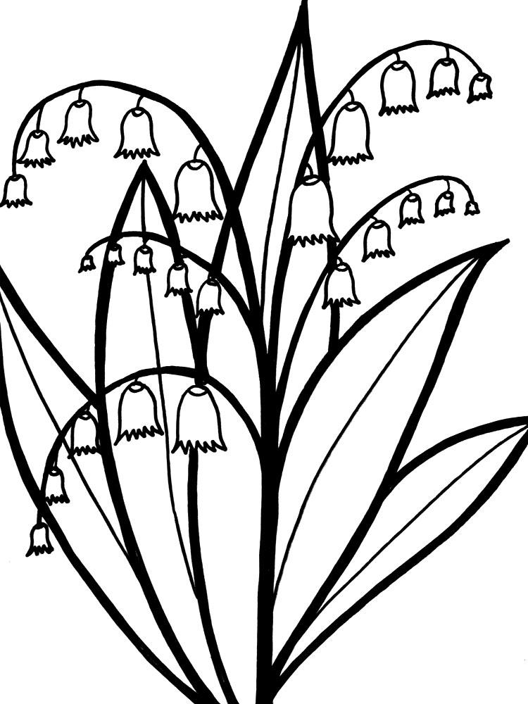 Цветы картинки раскраски для детей - 8