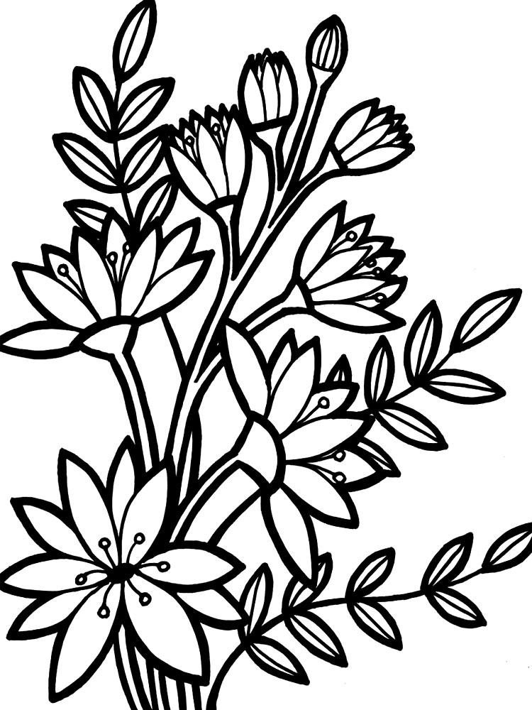 Раскраски для девочек распечатать бесплатно цветы - 5