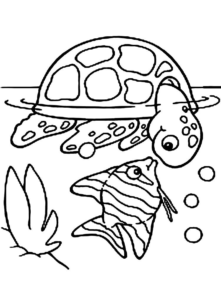Обитателей морей и океанов картинки для детей