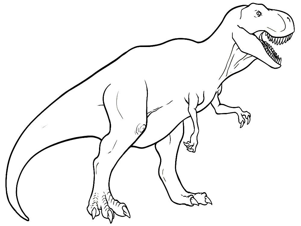 Динозавры раскраски для мальчиков