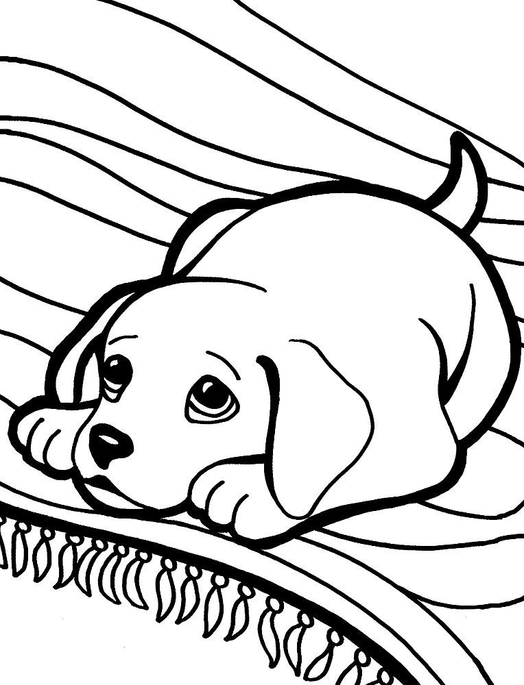 Собаки раскраски для малышей