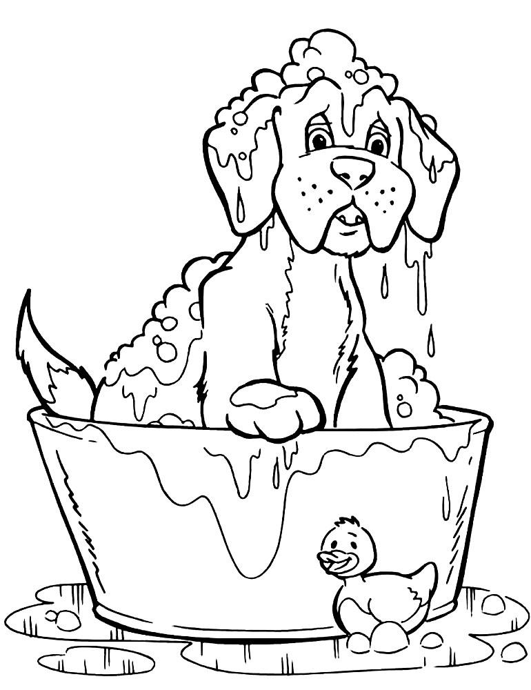 Раскраски собаки для мальчиков