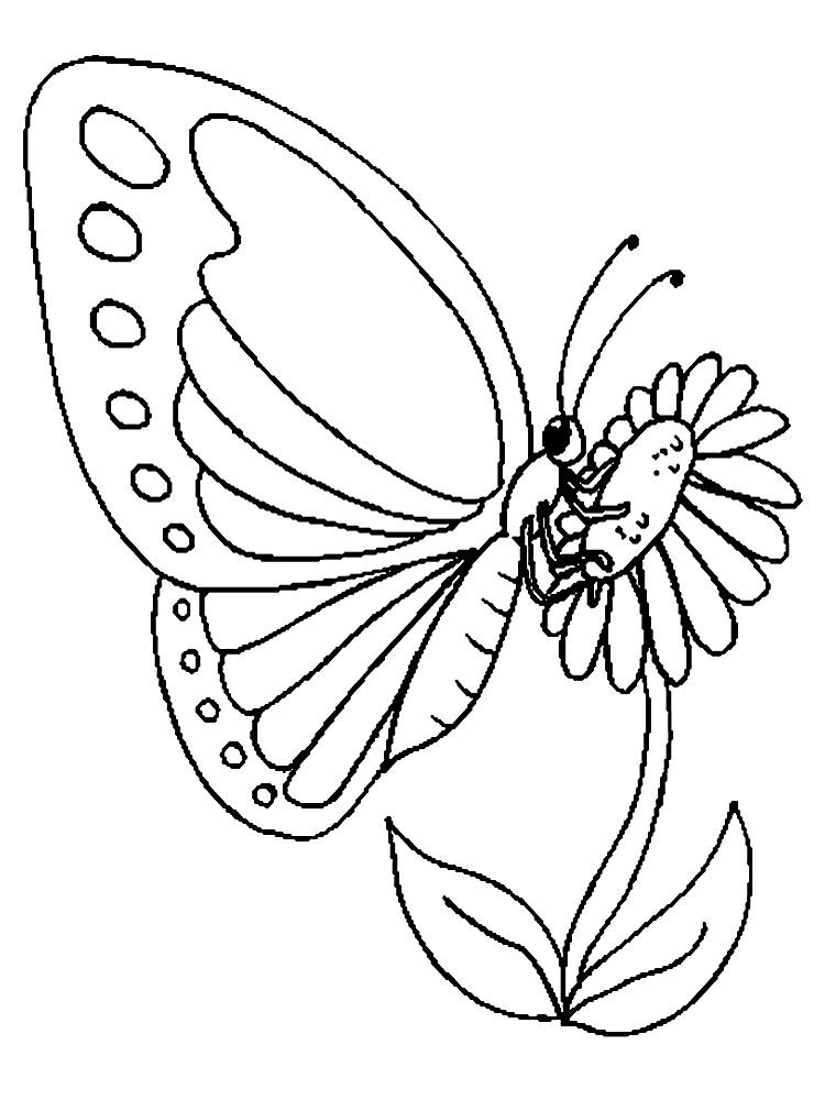 раскраски бабочки для мальчиков