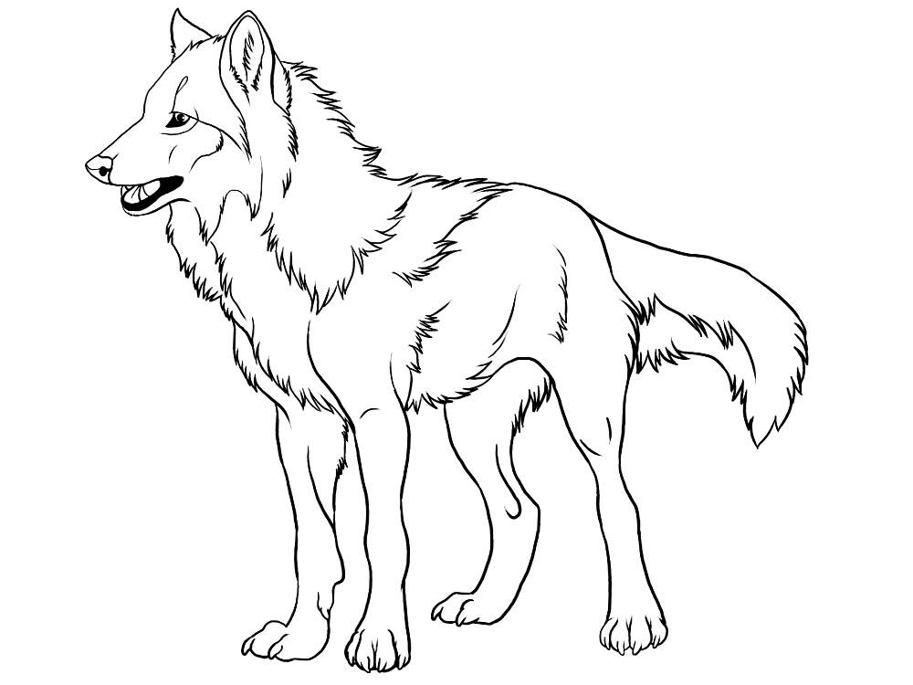 Волки картинка раскраска 3