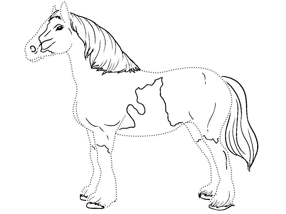 Рисунки лошади раскраска