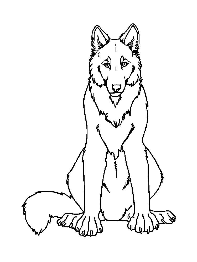 игры раскраски волки понравятся девочкам и мальчикам